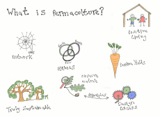 what is permaculture in colour